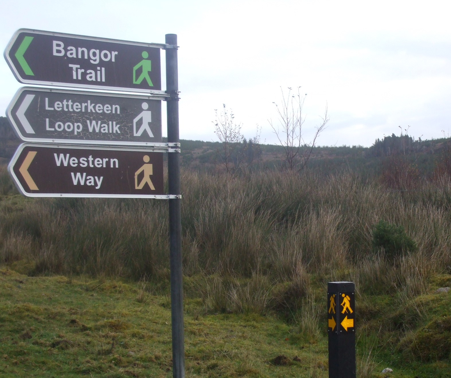 The Bangor Trail