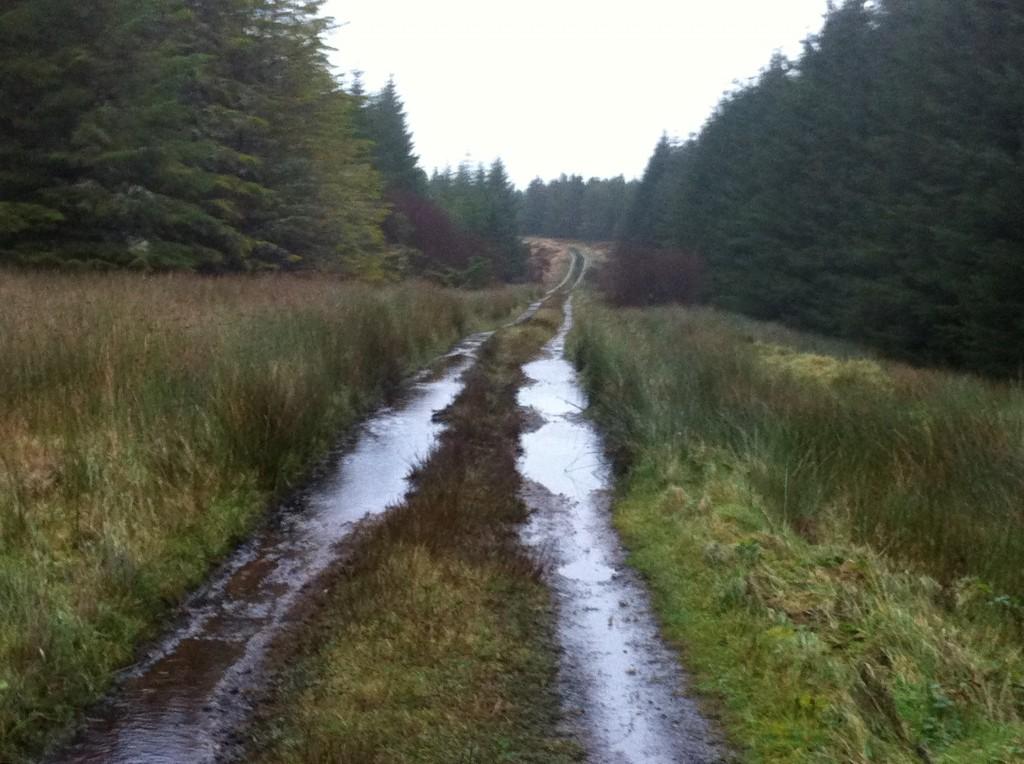 Western Way Mayo