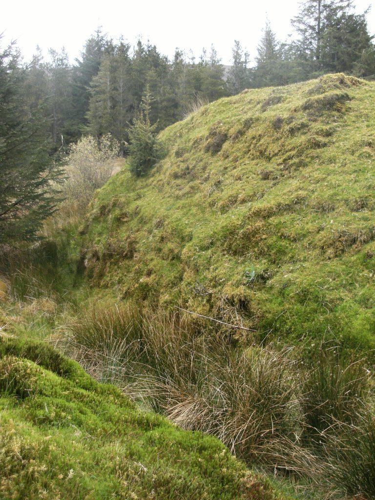 Ringfort, Ireland - Lios na Gaoithe