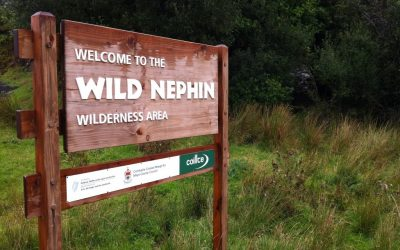 Wild Nephin – Wilderness or Wasteland ?