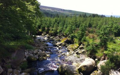 St Kevins Way in Wicklow