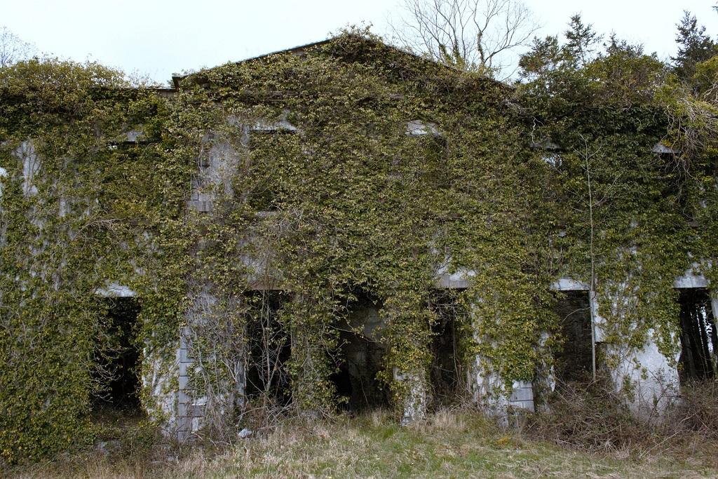 Towerhill House Blake
