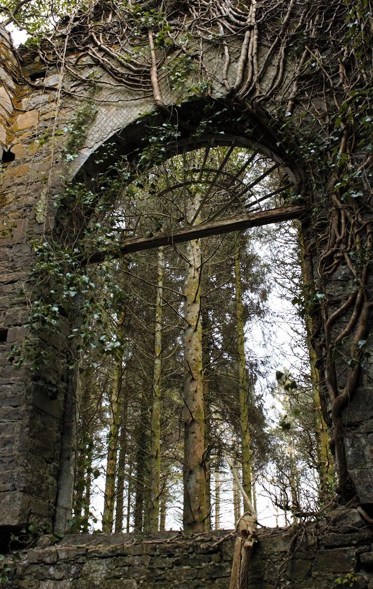 Towerhill House gable window